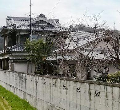 太山寺1200
